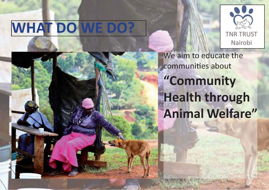 TNR - what do we do posters_Page_10