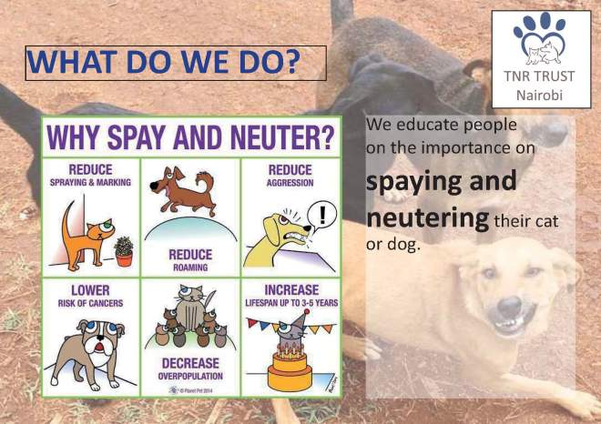 TNR - what do we do posters_Page_11