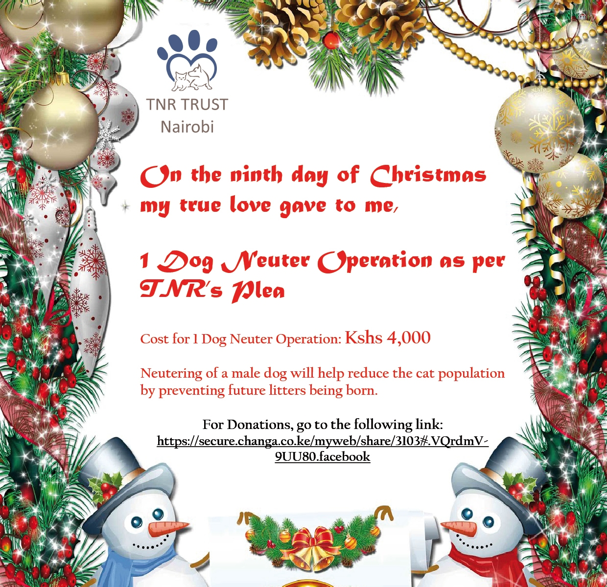 12 Days of Christmas: Day 9 | TNR Trust