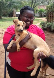 This lady adopted 2 dogs from TNR Trust after overcoming her fear of dogs!