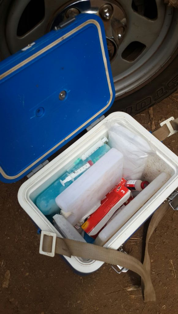 Vaccination kit