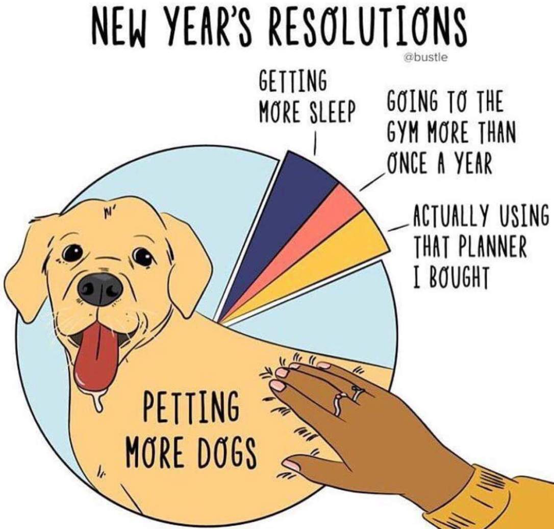 New Year's Resolution - funny
