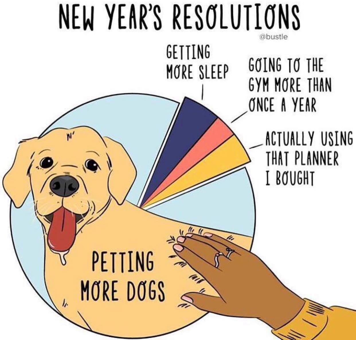New Yearu0027s Resolution   Funny