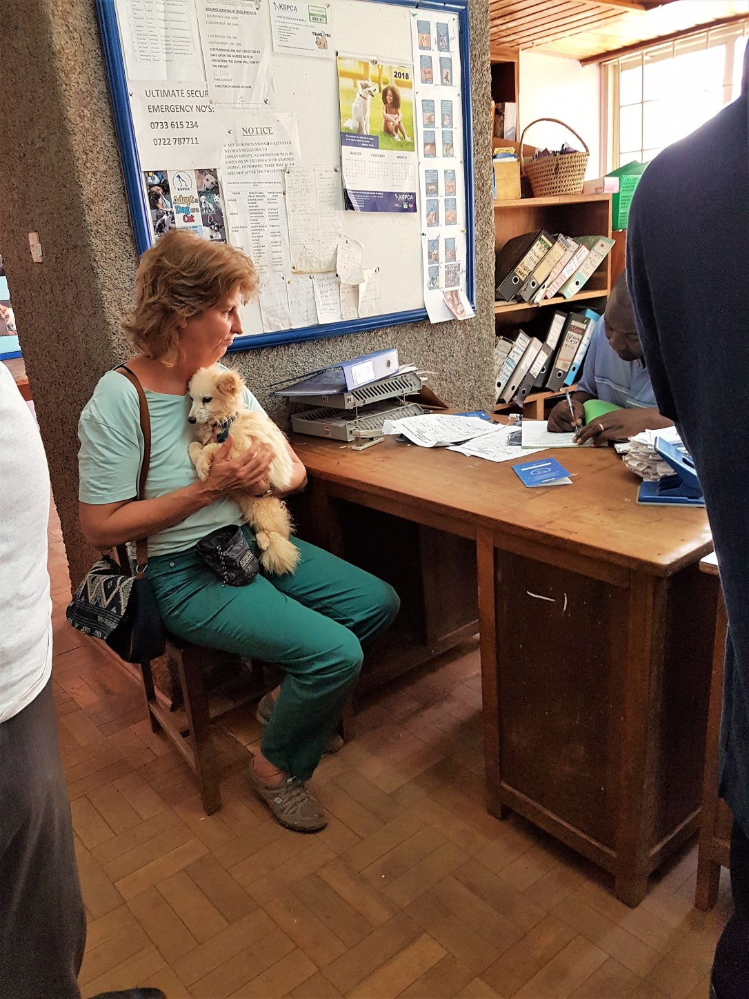 Carla (Trustee) sitting down with Fred to do the handover paperwork for each dog. Paco was happy being a lapdog, but was still shaking (nervous)
