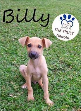20170814 Billy