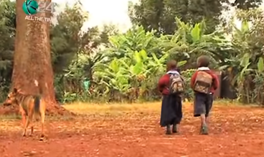 Oscar taking Wanjiku and Mbugua to school