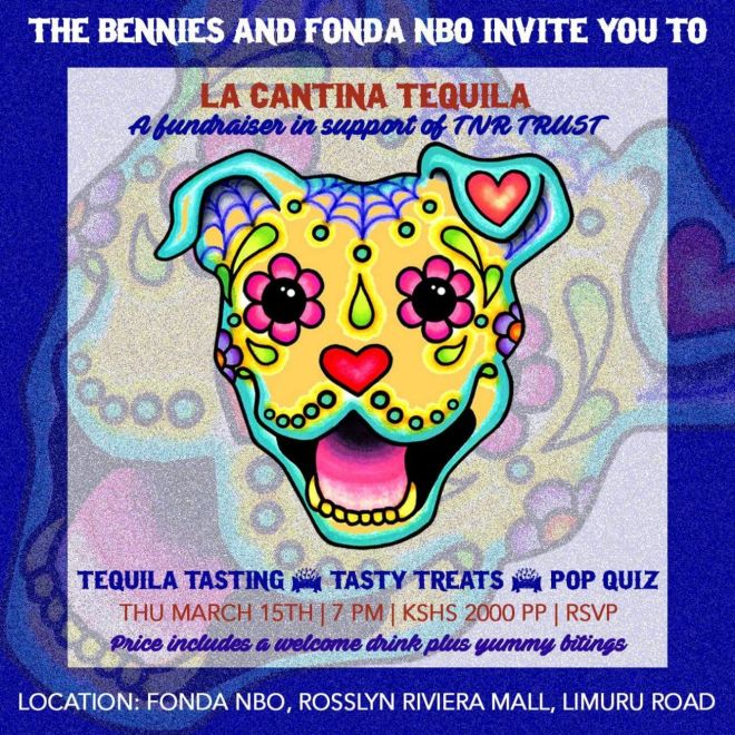 NEW Poster Cantina Tequila - Fonda NBO