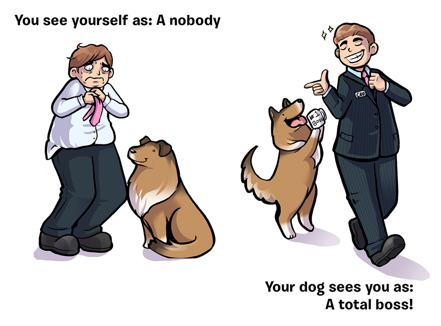 how-you-see-yourself-vs-how-your-dog-sees-you-13__880