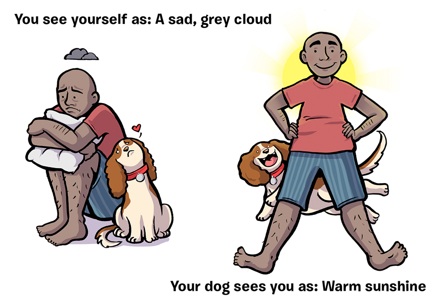 how-you-see-yourself-vs-how-your-dog-sees-you-20__880