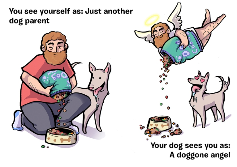 How You See Yourself vs How Your Dog Sees You (10+Illustrations)