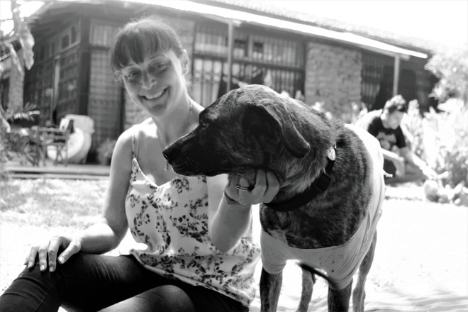 This is Tiggy at her foster home. Fostering a dog is a great way to still have a dog if you are an expat.