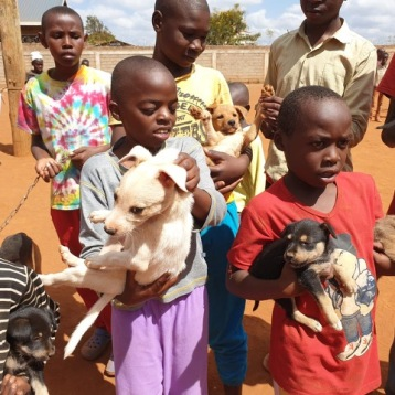 Puppies and children waiting for vaccines